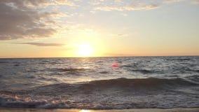 Puesta del sol a lo largo de la orilla del lago durante tiempo de verano almacen de metraje de vídeo