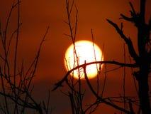 Puesta del sol mágica Fotos de archivo libres de regalías