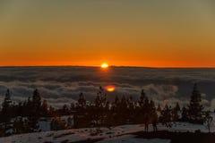 Puesta del sol mágica sobre el invierno del bosque del árbol de las nubes y de pino en las montañas de Tenerife, cubiertas por la imagenes de archivo
