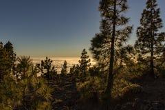 Puesta del sol mágica sobre las nubes en las montañas de Tenerife en las islas Canarias imagen de archivo libre de regalías