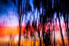 Puesta del sol móvil del árbol del fondo abstracto Imágenes de archivo libres de regalías