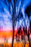 Puesta del sol móvil del árbol del fondo abstracto Fotografía de archivo libre de regalías