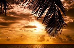 Puesta del sol maldiva Imagen de archivo