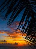 Puesta del sol maldiva Imagen de archivo libre de regalías
