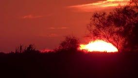 Puesta del sol maravillosa almacen de metraje de vídeo