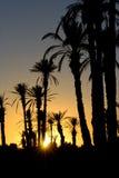 Puesta del sol Marruecos Foto de archivo libre de regalías