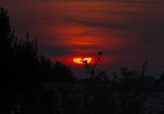 Puesta del sol melancólica Fotos de archivo libres de regalías