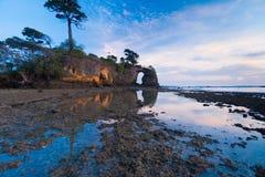 Puesta del sol natural de la reflexión de la marea inferior de los árboles del puente Fotos de archivo