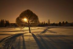 Puesta del sol Nevado Foto de archivo libre de regalías