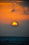 Puesta del sol nublada en el océano. Fotos de archivo