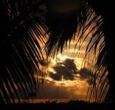 Puesta del sol nublada enmarcada con las palmas Imágenes de archivo libres de regalías
