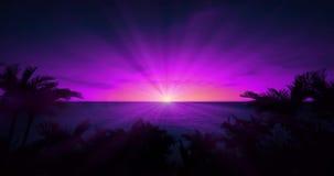 Puesta del sol púrpura del cielo con el sol brillante rodeado por Palm Beach tropical almacen de video