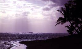 Puesta del sol púrpura de la silueta Imagen de archivo libre de regalías