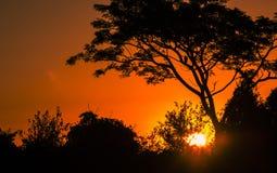 Puesta del sol pacífica de un día de enero fotos de archivo libres de regalías