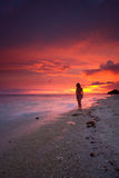 Puesta del sol pacífica de la playa Fotografía de archivo