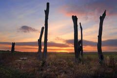 Puesta del sol Penrith NSW Australia Imagen de archivo libre de regalías