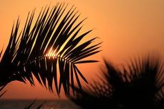 Puesta del sol perezosa sobre el mar Fotos de archivo libres de regalías
