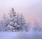 Puesta del sol pintoresca Imagen de archivo