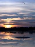 Puesta del sol por el lago Foto de archivo libre de regalías