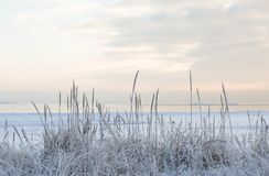 Puesta del sol por la playa, mar helado del invierno imagen de archivo