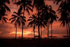 Puesta del sol por la tarde Foto de archivo libre de regalías