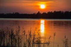 Puesta del sol por un lago Imagen de archivo libre de regalías