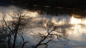 Puesta del sol que refleja en el río de Waikato en Ngaruawahia fotografía de archivo