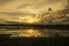 Puesta del sol Ricefield Foto de archivo libre de regalías