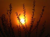 Puesta del sol roja Imagenes de archivo