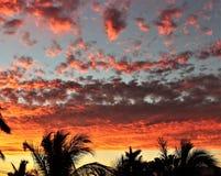 Puesta del sol roja 3 de Manzanillo Fotos de archivo libres de regalías