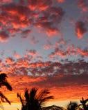 Puesta del sol roja 4 de Manzanillo Foto de archivo libre de regalías