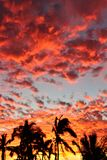 Puesta del sol roja 5 de Manzanillo Imágenes de archivo libres de regalías