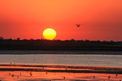 Puesta del sol roja en el mar imagenes de archivo