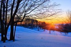 Puesta del sol roja en un bosque del invierno Imágenes de archivo libres de regalías
