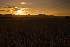 Puesta del sol romántica en el stredohori de Ceske de la región en paisaje checo con los campos, los pilones y las montañas Miles Fotografía de archivo libre de regalías