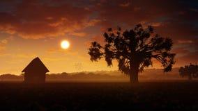 Puesta del sol romántica del paisaje Fotos de archivo