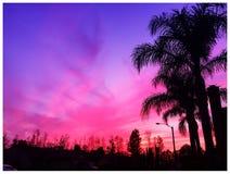 Puesta del sol rosada Imágenes de archivo libres de regalías