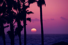 Puesta del sol rosada del cielo imágenes de archivo libres de regalías