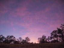 Puesta del sol rosada en California imagen de archivo libre de regalías