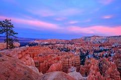Puesta del sol rosada en el punto de la puesta del sol - barranco de Bryce Fotos de archivo