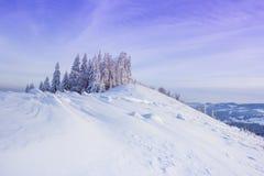 Puesta del sol rosada en montañas Fotografía de archivo libre de regalías