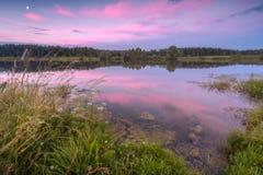 Puesta del sol rosada por el lago con la reflexión Imágenes de archivo libres de regalías