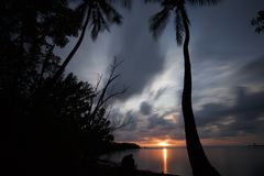 Puesta del sol rosada que refleja en el océano con las palmeras Imagen de archivo libre de regalías