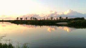 Puesta del sol rosada y azul del paisaje majestuoso del verano y cielo dramático sobre el pequeño río almacen de metraje de vídeo