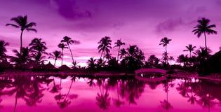 Puesta del sol rosada y roja del panorama sobre la playa del mar Fotografía de archivo libre de regalías