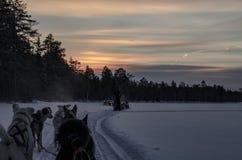 Puesta del sol Rovaniemi Finlandia Fotos de archivo libres de regalías