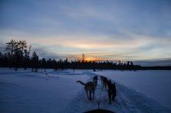 Puesta del sol Rovaniemi Finlandia Fotografía de archivo