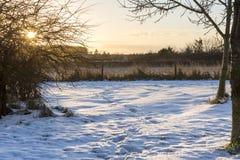 Puesta del sol rural del invierno fotografía de archivo libre de regalías