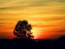 Puesta del sol sangrienta Fotos de archivo libres de regalías