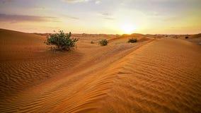 Puesta del sol sobre desierto medio-oriental almacen de video